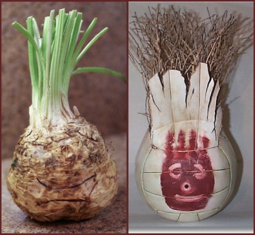 celery-root-wilson-the-volleyball-castaway