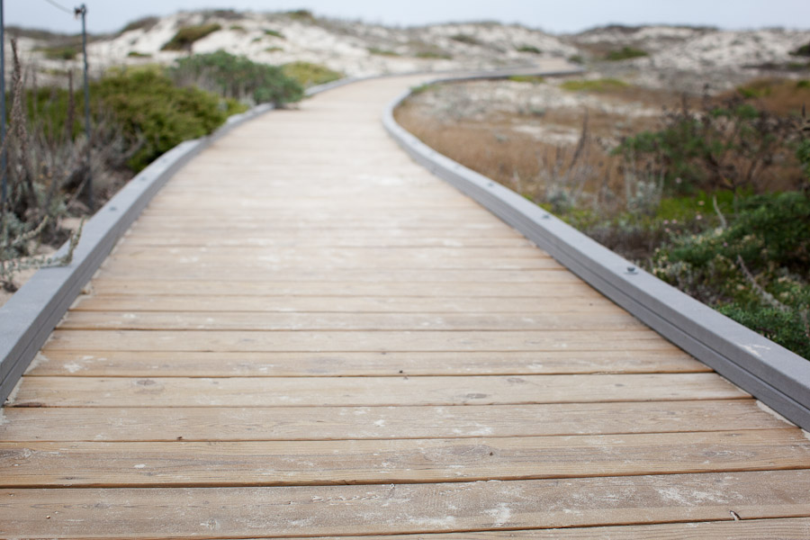 asilomar-boardwalk-sand-dunes