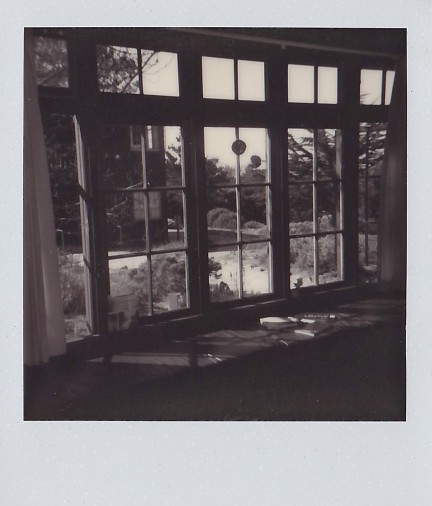 impossible PX 600 Silver Shade