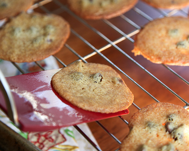 malted chocolate chip cookies from Pioneer Woman Cookbook