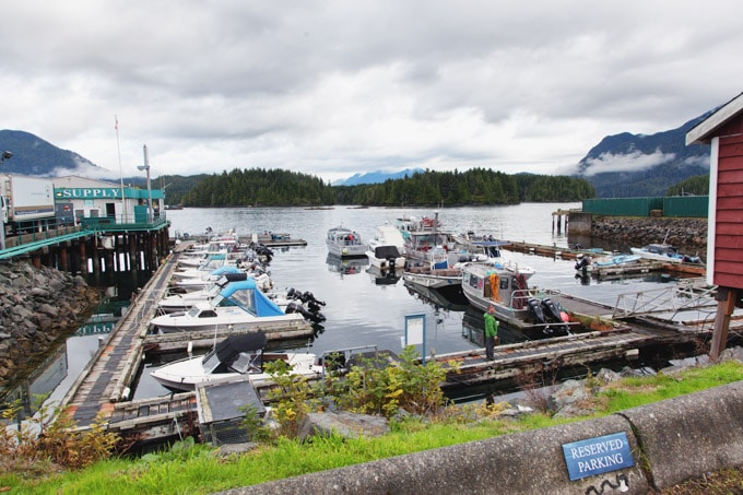 tofino-harbor-boats