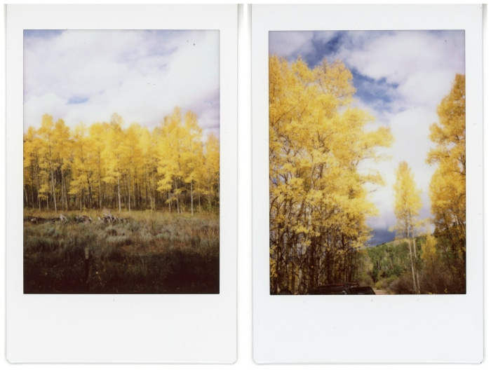 Aspens_on_Instax